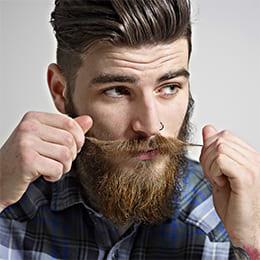 Модная борода, 5 самых популярных бород сайта Wikibeardia